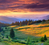 Beautiful summer landscape in the mountains. Dramatic sunset.