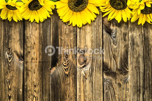 Rustic Sunflower Desktop Backgrounds