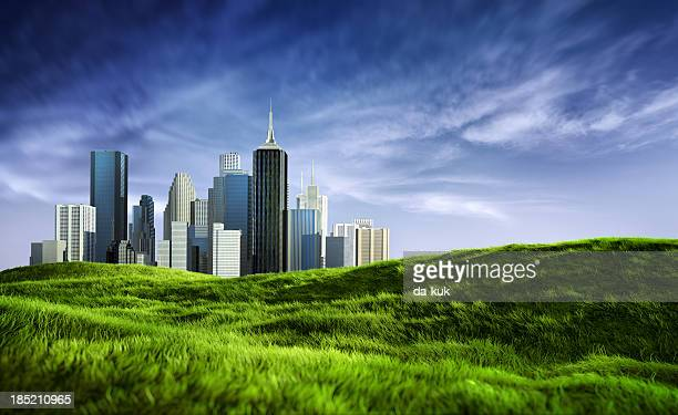 Beautiful sunny downtown skyline and clean green grass field