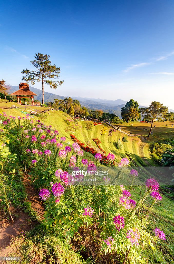 beautiful sunrise at viewpoint of huay nam dung national park : Stock Photo