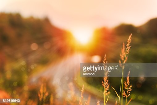 Beautiful sunrise landscape in high mountain road : Stock-Foto