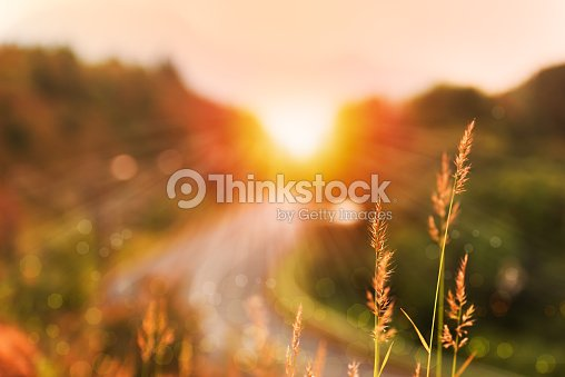 Beautiful sunrise landscape in high mountain road : Stock Photo