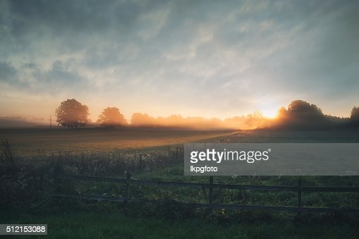 Beautiful sunrise over misty field an early summer morning