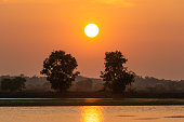 Beautiful sunset over lake and two tree silhouette background