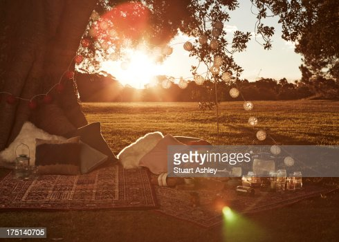 Beautiful sunset picnic