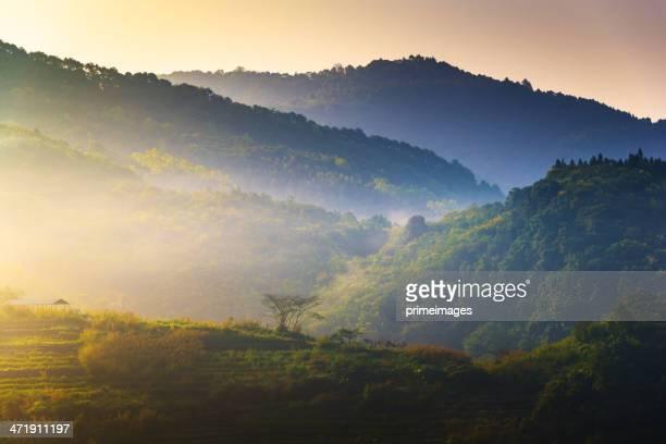 Schöne Sonne an einem nebligen Morgen-Berge.