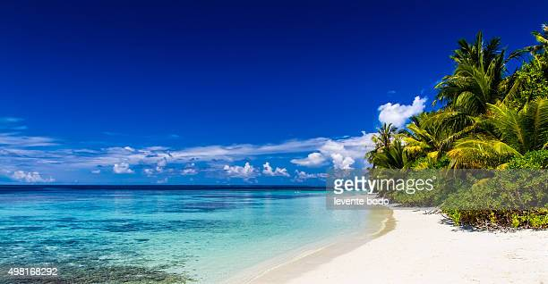 Beautiful tropical beach panorama