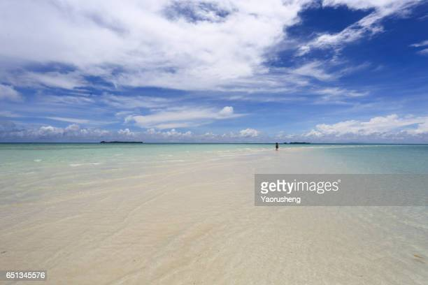 beautiful tropical landscape. people walking on a beach
