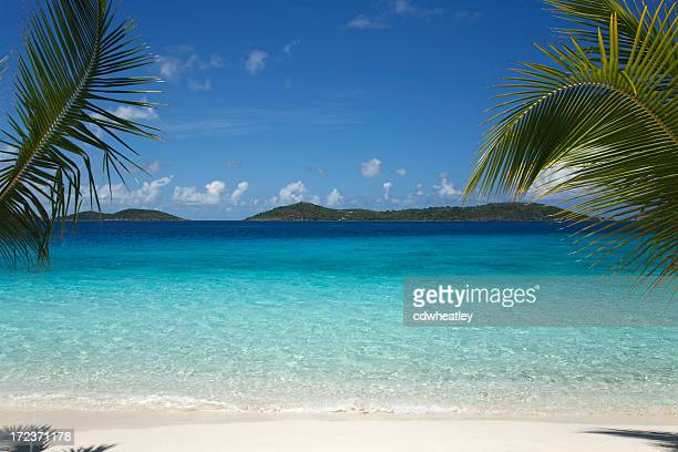 beautiful tropical scene at a  beach in the Caribbean