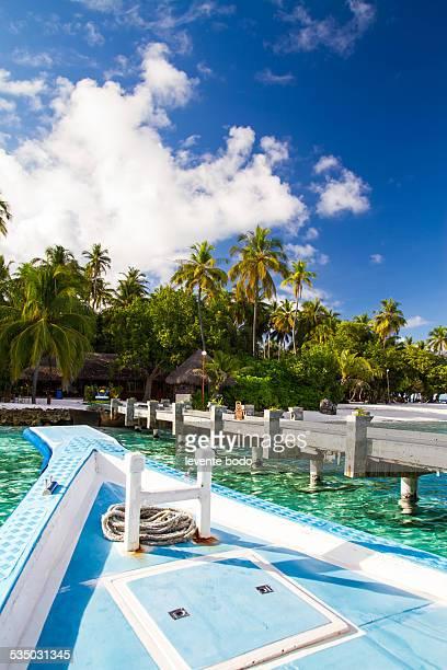 Beautiful tropical scenery