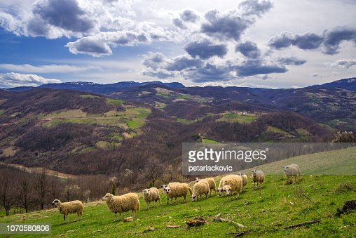 Beautiful vibrant mountain scenery : Stock Photo
