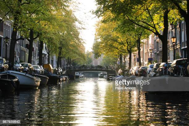 Beautiful view from the canal in Amsterdam