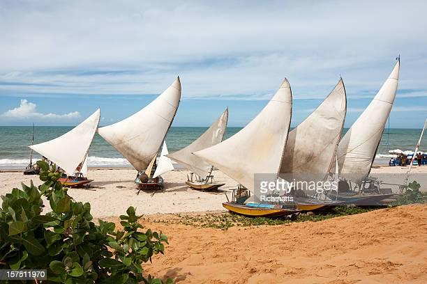 Beautiful view of the Jangada Tropical Beach in Brazil
