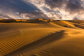 Beautiful desert landscape with a colorful sunset. Desert background.