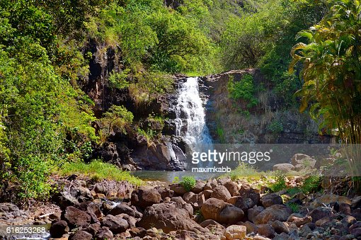 Beautiful waterfall in Waimea Valley on Oahu : Foto de stock