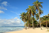 Beautiful white sand beach in Caribbean Islands