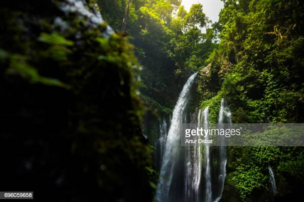 Beautiful wild waterfall in the deep rain forest of the national park of the Lombok island taken during travel vacations in Indonesia.