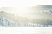 A beautiful winter landscape with snowy trees and mountains in a distance in central Norway.