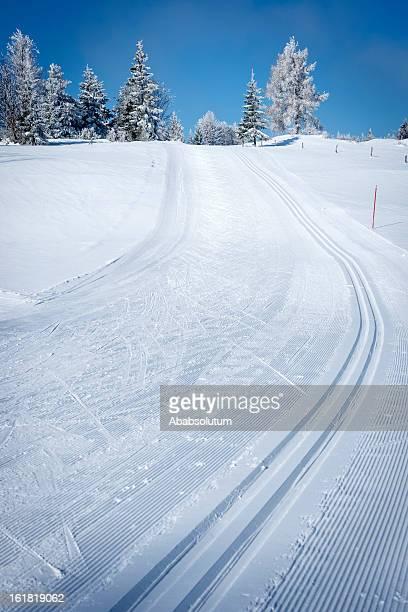 Superbe scène hivernale avec des pistes de Ski de fond
