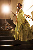 Beautiful Woman in evening dress on stairs