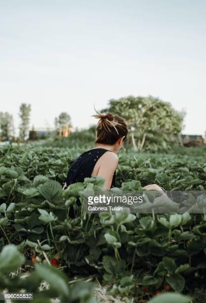 Beautiful woman picking strawberries