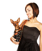 Beautiful Young Woman Smiling at Pet Chihuahua in her Handbag