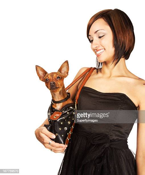 Beautiful Young Woman Smiling at Pet Chihuahua in her Handbag