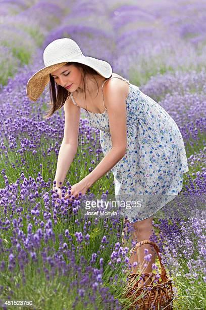 Schöne Junge auf einem Lavendel-Feld