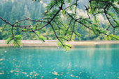Beauty in nature at Jiuzhaigou Valley National Park