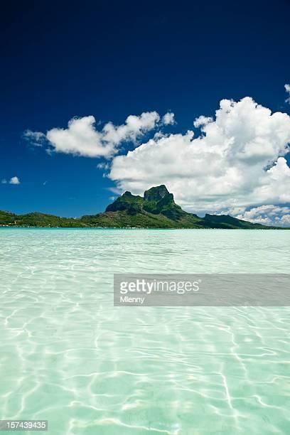 Beauté de Paradise