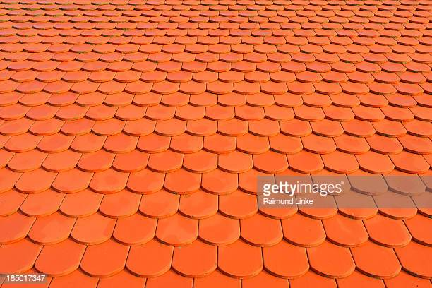 Beaver Tail Tile Roof