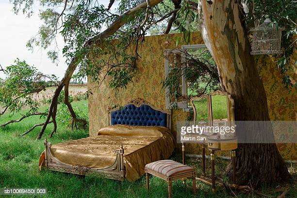 Bed and mirror beneath tree in field