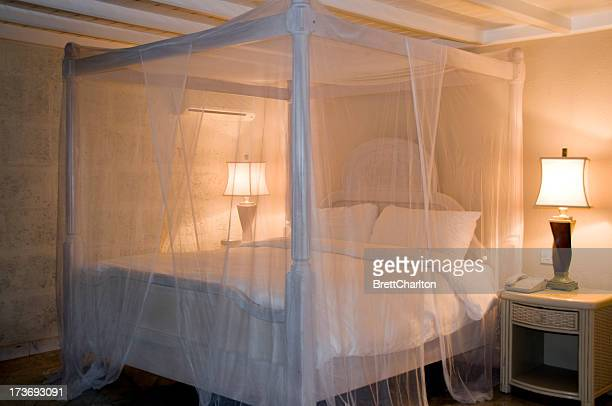 Bed with white canopy and illuminated lamps