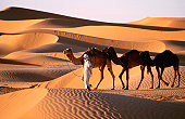 Bedouin and camels among sand dunes.