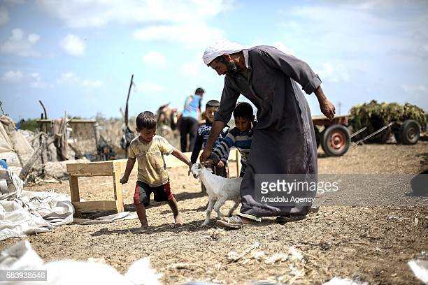 Bedouin boy and his father are seen with a baby goat near their makeshift huts without water and basic living necessities at Khan Younis in Gaza City...