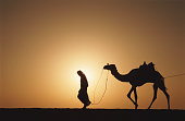 Bedouin leading camel at sunrise, silhouette