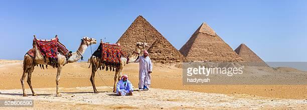 Bédouins et les pyramides