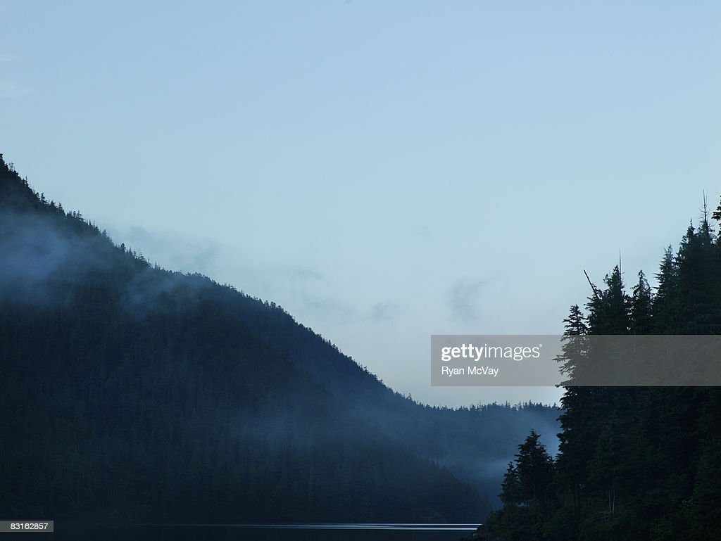Bedwell Sound in early morning.  : Stock Photo