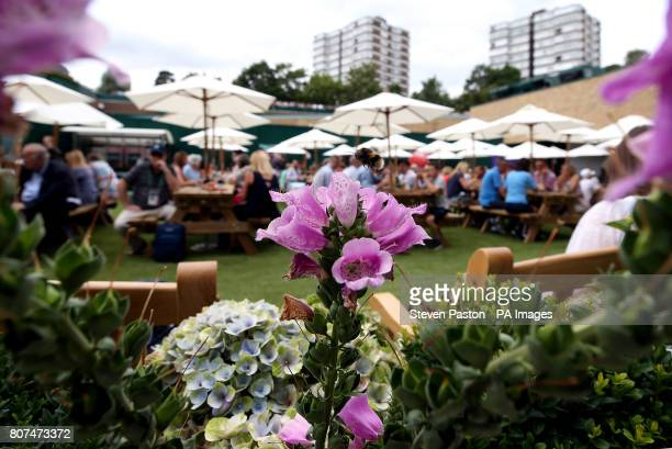 A bee flies near flowers next to the new food court replacing the old court Nineteen on day two of the Wimbledon Championships at The All England...