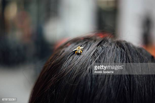 A bee in the hair of a woman