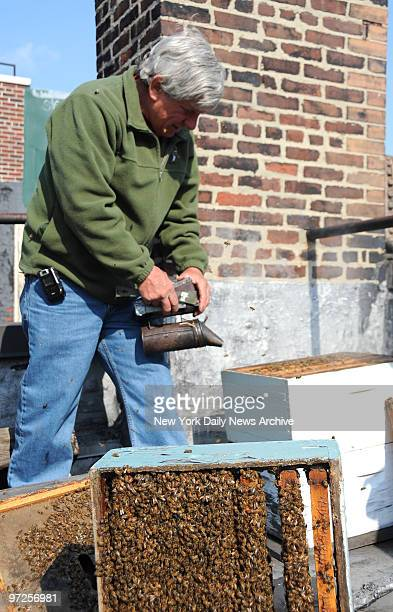 Bee keeper David Graves tends to the roof top bee hives on Peter Hoffman's East Village home