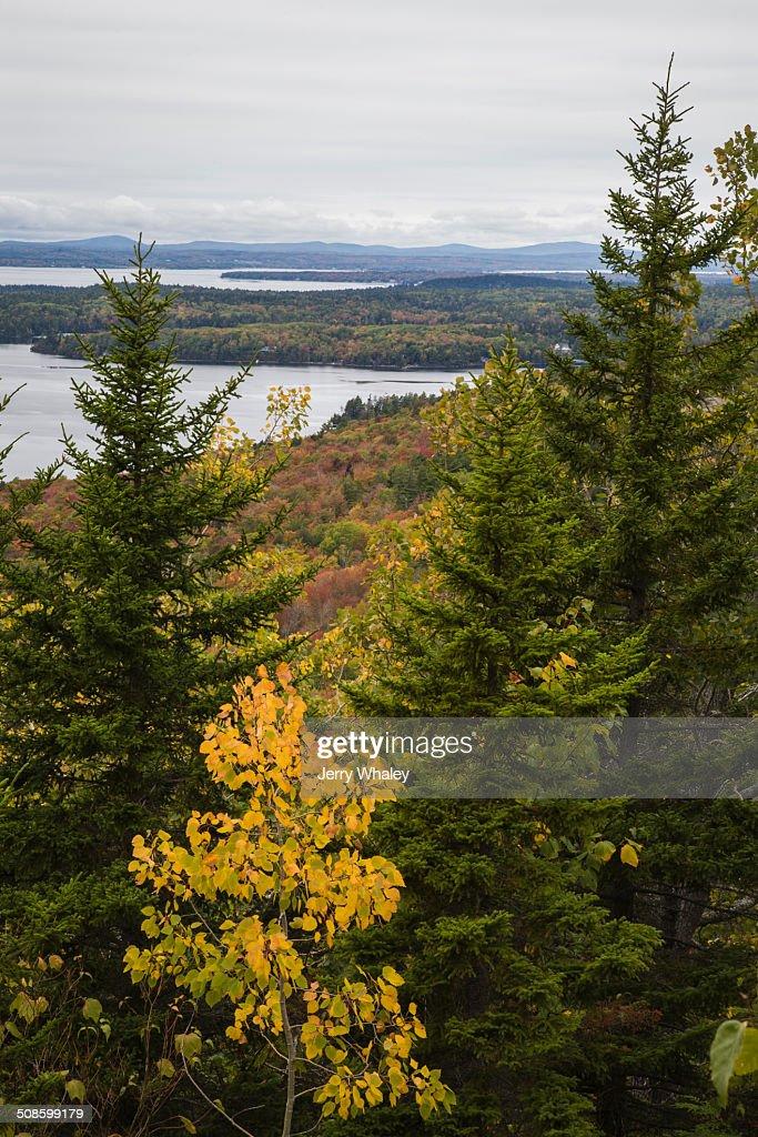 Beech Mtn Trail, Acadia NP, Maine : Foto de stock