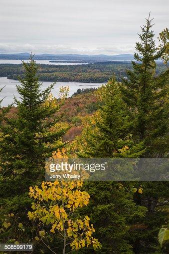 Beech Mtn Trail, Acadia NP, Maine : Stock Photo