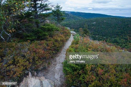 Beech Mtn Trail, Acadia : Stock Photo