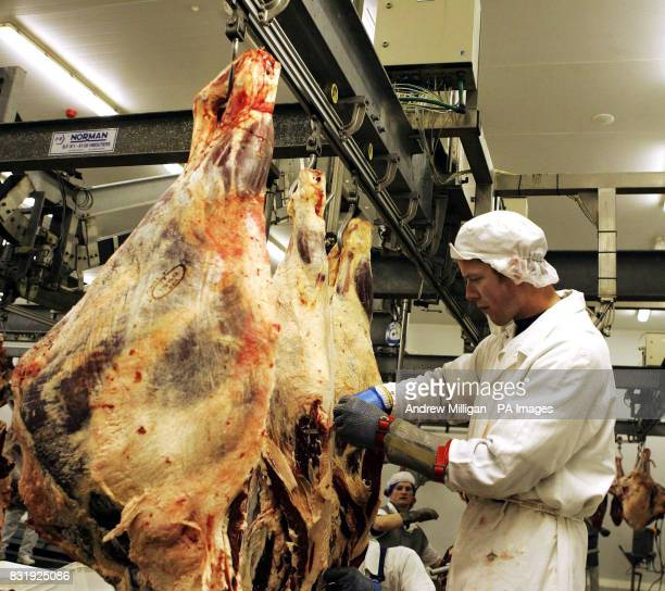 Beef being prepared at the Scotbeef plant in Bridge of Allan on the day the export trade to the continent officially reopened