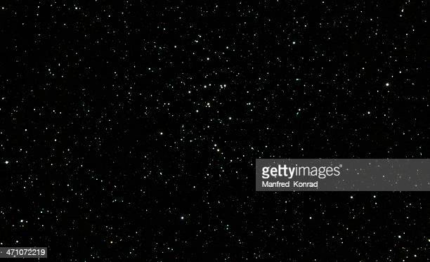 Beehive Star Cluster