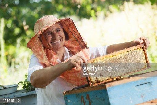 Beekeeper holding honeycomb frame : Stockfoto