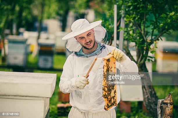 Beekeeper in uniform at work