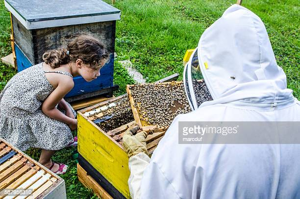 Beekeeper showing to little girl frame full of bees