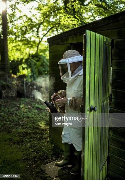 A beekeeper walking out of a shed wearing a veil and holding a smoker to calm honeybees.